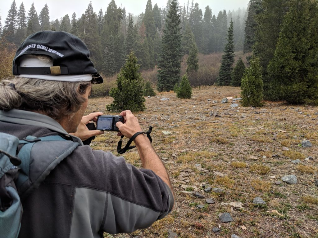 Project to Reform Public Land Grazing in Northern California monitors in Klamath National Forest